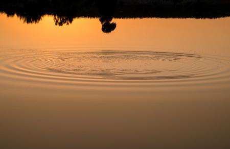 vagues animées sur l'eau
