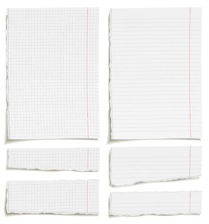 lined: Set of blank squared and lined paper sheets or notepad pages