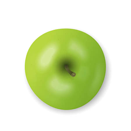 Green apple isolated on white background. Fresh snack, healthy food concept. Closeup Vector 3d illustration, top view. Transparent shadows.