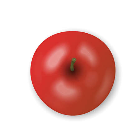 Red apple isolated on white background. Fresh snack, healthy food concept. Closeup Vector 3d illustration, top view. Transparent shadows. 矢量图像