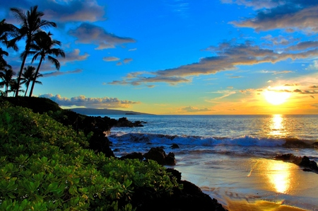ヤシの木や葉でマウイ島のビーチの夕日