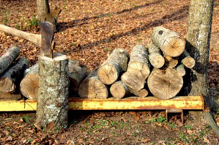 Staked firewood with axe in log