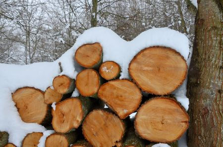 heap of snow: Firewood covered in snow Stock Photo