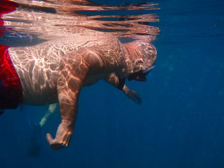 submerged: Submerged man snorkeling