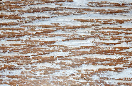white backing: White textured paint on wood backing.  Abstract background or backdrop. Stock Photo