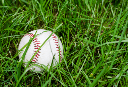 Baseball in green grass.  Outdoor athletic activity of fun and competition.  Details of ball in outdoor setting. Standard-Bild - 116845838
