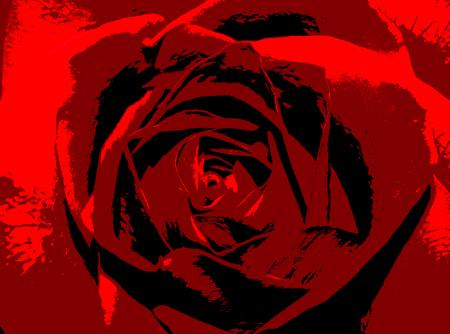 Abstrakte Rotrosen-Blumenillustration. Hintergrund der Blume für Romanze oder Feier. Standard-Bild - 89556857