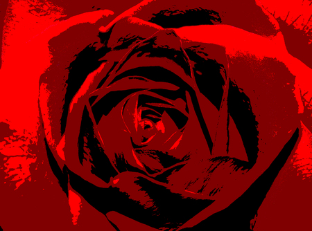 Abstract red rose flower illustration. Background of flower for romance or celebration.
