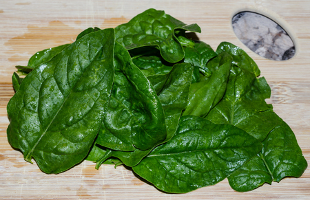 Fresh uncut whole herb basil leaves. Homegrown organic aromatic delicious addition to home cooked meals. Standard-Bild - 95046098