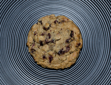 Sweet tasty chewy Oatmeal Cranberry Cookie.  Delicious hearty fresh baked sweet treat. Standard-Bild - 95315532