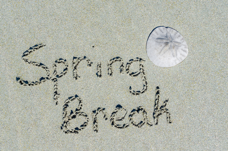 Spring break message in tropical beach sands with sand dollar. Standard-Bild - 95721462