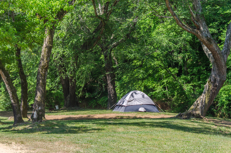 Tent camping in beautiful outdoor setting with trees and sunshine. Fun spring summer adventure of expedition and relaxation.