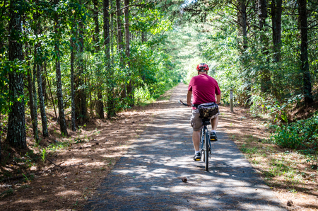 Adult senior riding bike through wood. Sunshine streaming through trees. Adult male bicycle rider, enjoying exercise and healthy enjoyable activity. Stock Photo