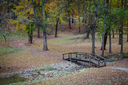 Beautiful scenic walk with wooden bridge over stream. Wooded park with hiking path. Camp or recreation travel destination location.
