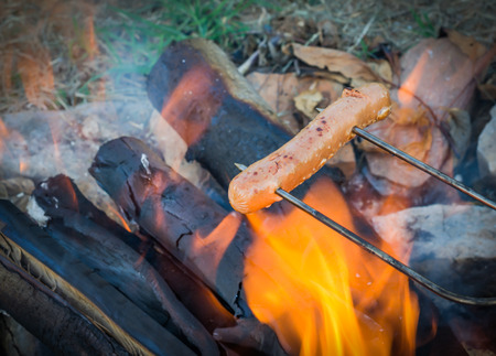 Roasting hotdogs over campfire. Fun and relaxation of preparing food and camping outdoors. Relax and recreation in natures beautiful outdoor setting. Standard-Bild - 114070607