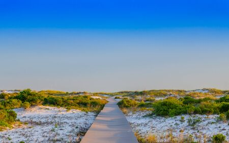 Walking path thru sand beach dunes and foliage, leading to ocean beach. Beautiful natural outdoor setting with blue skies. Relaxed vacation destination at tropical Gulf Coast.