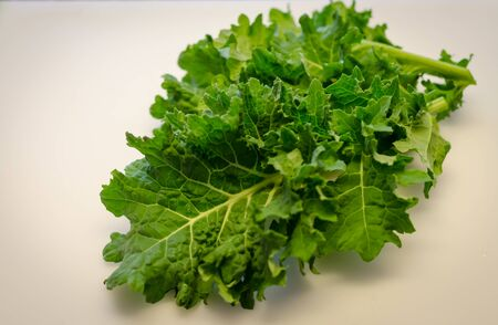 Fresh organic super food Kale leaf.  Homegrown in vegetable garden. Delicious nutritious healthy leaf vegetable of dark greens. Dark green Kale ready to incorporate into healthy diet.