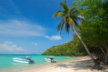 motorboats: Motorboats in the seashore, seaside landscape