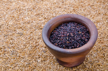 chaff: Closeup details of Thai rice berry in mortar over rice chaff background