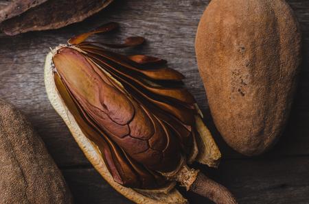 caoba: Mahogany seed decoration background