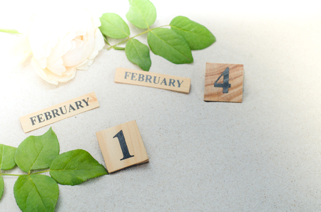 February 14, wooden calendar with rose flower on sand background