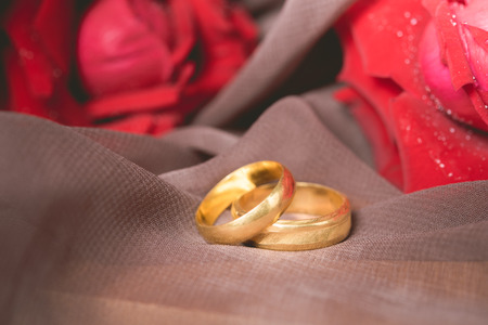 Gold wedding rings with red roses background. Engagement concept.