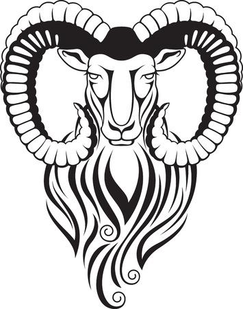Schwarz-Weiß-Darstellung einer Bergziege - Mufflon mit großen gebogenen Hörnern Standard-Bild - 52578902