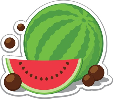 Vector illustration of a watermelon and a slice of watermelon with chocolate balls.