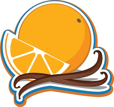 Vector illustration of an orange and a slice of orange with cinnamon sticks.