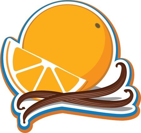 Vector illustratie van een sinaasappel en een schijfje sinaasappel met kaneelstokjes.