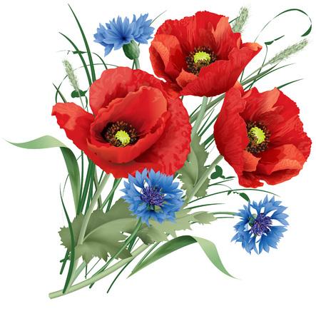 Ilustración vectorial montón de flor de amapola roja con hojas verdes, copos de maíz azul y trébol de liebre.
