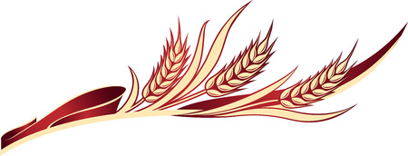 Vector illustration of a few ripe wheat ears with leaves on the red ribbon.