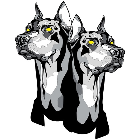 Vector black and white illustration of a two Doberman Pinscher heads in tattoo style.