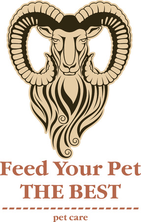 mouflon: Vector illustration of a mountain goat - mouflon with large curved horns isolated separate head. Good as icon or logo element, may be for pet care center etc. Illustration