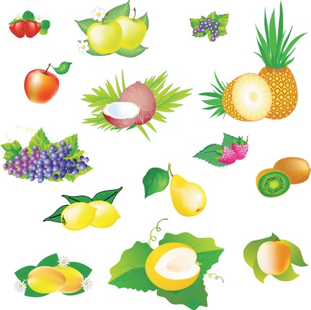 Set of vector images of fruits for label and packaging design.