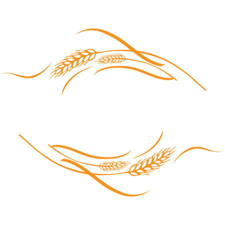 Vector illustration of a few gold ripe wheat ears. Can be used as frame, corner or border design element.