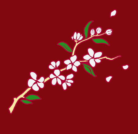 Vector illustration in the Japanese style branch of blooming sakura isolated on red background.