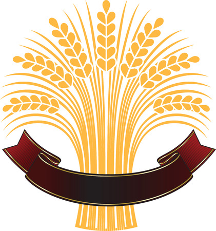 Golden ripe wheat sheaf with elegant brown banner. Vector decorative element, brand icon or logo template. Illustration