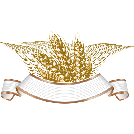 Vintage vector engraving illustration of ripe wheat and wheat field landscape on elegant banner. Farmers market badge with ripe wheat field, cereals.