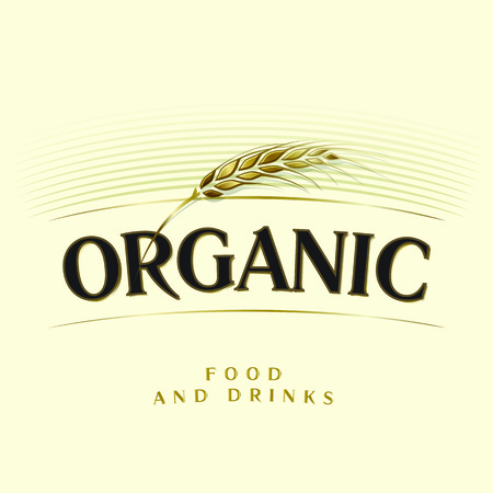 Golden single wheat ear and inscription organic food and drink on beige background. Vector illustration. Illustration