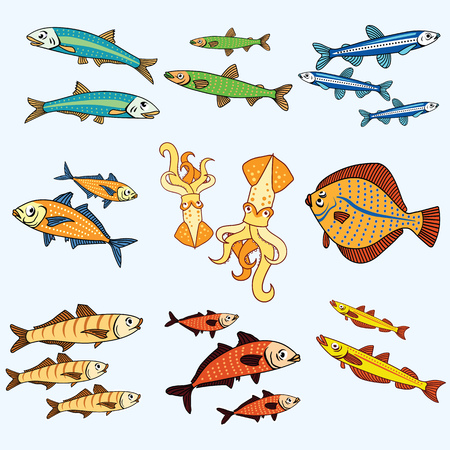 Varieties of popular color fish