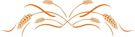 Gold ripe wheat ears 向量圖像