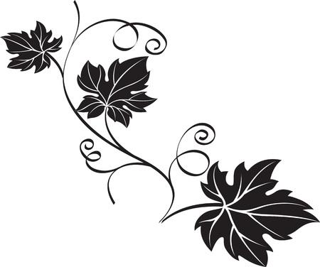 Zwarte druiventak met bladeren die op witte achtergrond worden geïsoleerd. Decoratieve sieraad vectorillustratie.