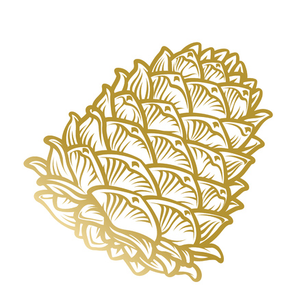 Gold pine cone isolated on white background hand drawn illustration in engraving style. Ilustração