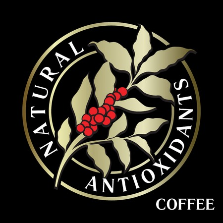 Branch of coffee tree with leaves, flowers and coffee beans in circle. Floral decor for organic product with natural antioxidants. Vector template for icon, menu. Illustration