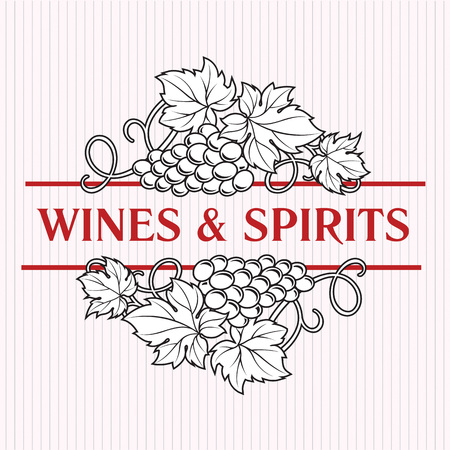 Bunches of grapes. Elegant wine list or decorative element for alcohol drinks design. Wine, cognac, spirits icon template.  イラスト・ベクター素材