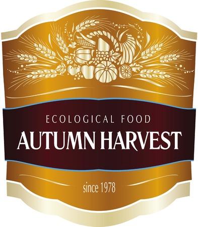 Fall Harvest Fest poster. Vector illustration. Standard-Bild - 97354735
