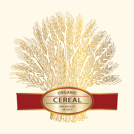 Cereal brand icon or logo template. Hand drawn wheat sheaf on beige background with banner.