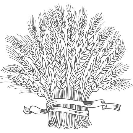 Gerbe de blé mûr noir dessiné à la main. Élément décoratif de vecteur, icône de marque ou modèle de logo. Logo