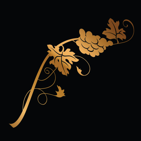 Golden grape branch with bunch of grapes and leaves on black background. Vintage winery design element. Can be used in menu restaurant, cafe, bar etc.  Ilustração